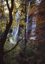 Calendar waterfalls