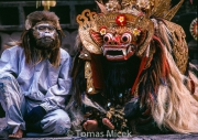 TM_Bali_067 001