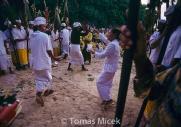 TM_Bali_019 001