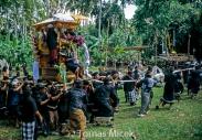 TM_Bali_024 001