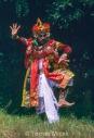 TM_Bali_066 001
