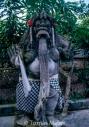 TM_Bali_037 001