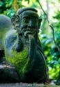TM_Bali_040 001