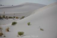 DESERT_0052