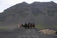 Iceland_Horses_001
