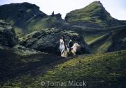 Iceland_Horses_007