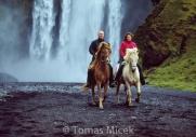 Iceland_Horses_013