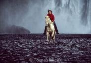 Iceland_Horses_014