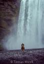 Iceland_Horses_061