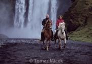 Iceland_Horses_068