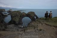 Iceland_Horses_079