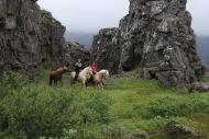 Iceland_Horses_081