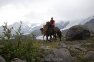 Iceland_Horses_130