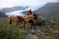 Iceland_Horses_131