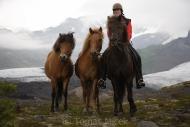 Iceland_Horses_132