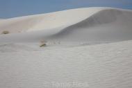 White_sands_013